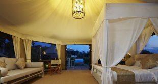 Rivershore Resort - King Safari