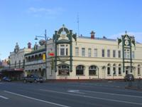 Photo of Camperdown Icon up for Sale