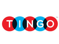 Photo of Tingo survey: travellers not responding