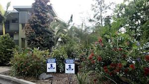 Wyndham Coffs Harbour gardens2