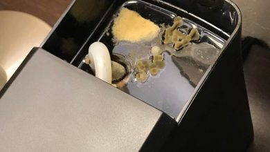 Photo of Grounds for disgust: What lurks in your coffee machine?