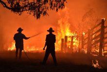 Photo of Accom counting cost of devastating bushfires