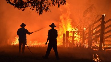 Photo of Accom counting cost of devastating bushfires