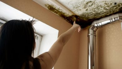 Photo of Mould and damp health costs are about 3 times those of sugary drinks